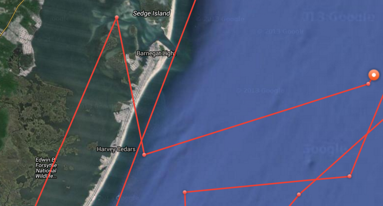 Mary Lee's track today. (Image: OCEARCH)