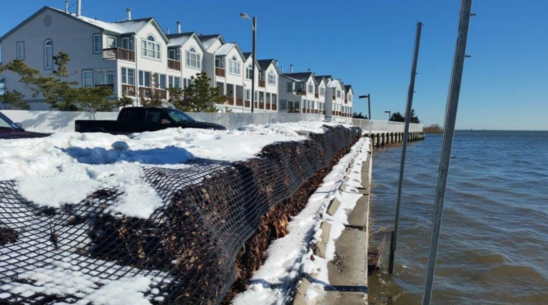 Protective leaf bales at the end of Radio Road in Little Egg Habor in late January. (Photo courtesy of Rob Libonati/Mystic Island, NJ Community Thoughts)