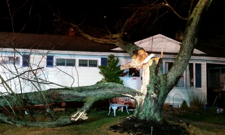 A large tree branch fell on a Neptune house this evening. (Photo courtesy of the Neptune Police Department)