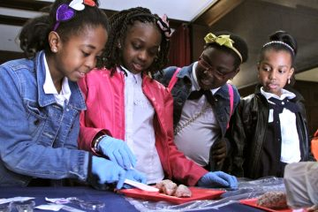 Third graders from Cornerstone Christian Academy (from left) Marenda Robinson, Kashae Livingston, Arianna Cox, and Milan Byrd, disect a sheep's brain during a science fair at the University of Pennsylvania. (Emma Lee/WHYY)