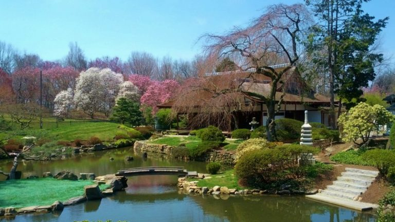 Shofuso Japanese House & Garden, one of many sites participating in this year's National Public Gardens Day. The public gardens in the Philly area can be enjoyed anytime with activities throughout the season. (Photo courtesy of Shofuso)