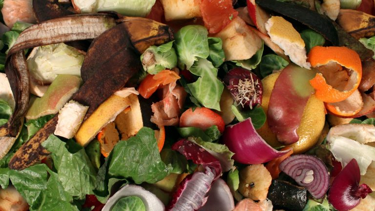 fruit and vegetable scraps