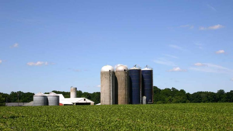So far, the dry spell has not posed a problem for crops in the Garden State, says Peter Furey, executive director of the New Jersey Farm Bureau.(<a href=