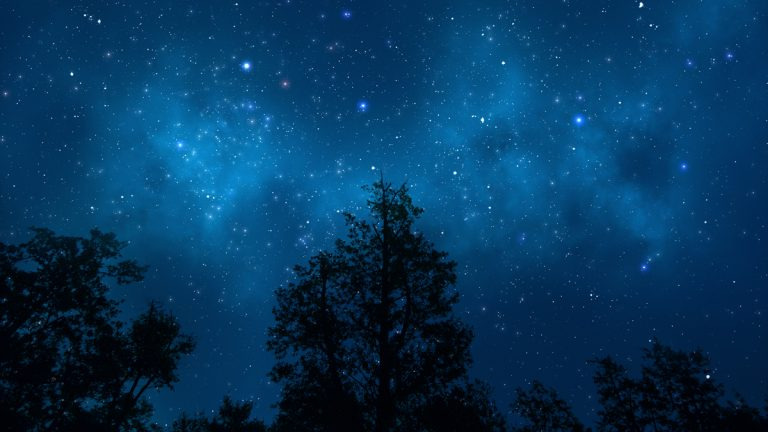 (<a href='http://www.shutterstock.com/pic-112649735/stock-photo-night-sky-with-trees.html'>Night sky image</a> courtesy of Shutterstock.com)