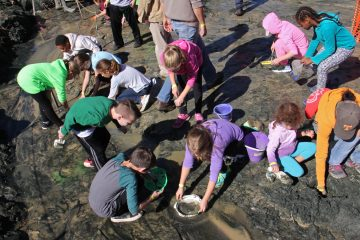 Students sift through a muddy stream looking for fossils from the Late Cretaceous. (Emma Lee/WHYY)