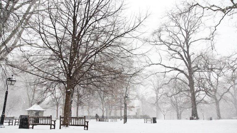 Washington Square Park in Center City coated in snow. (Kimberly Paynter/WHYY)
