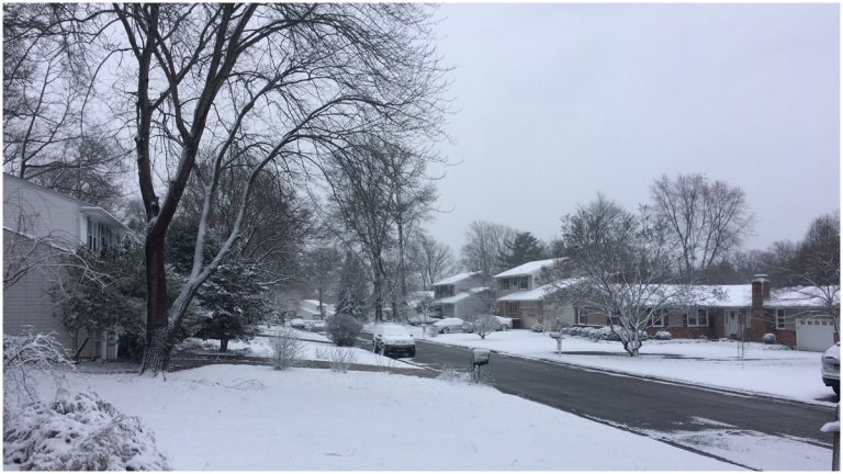 Snow accumulated on grassy areas and driveways in New Castle County (Shirley Min/WHYY)