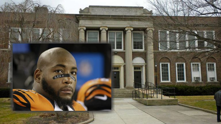 NFL player Devon Still(inset: AP Photo/Stephan Savoia)