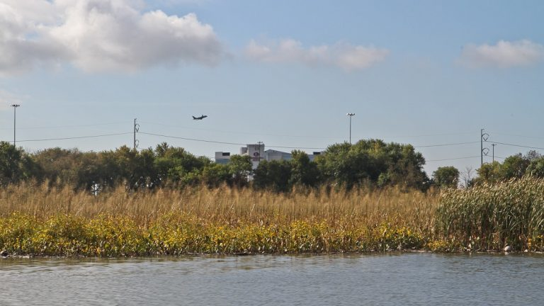 The John Heinz National Wildlife Refuge is a quiet oasis just north of 1-95 and the Philadelphia airport. (Kimberly Paynter/WHYY)
