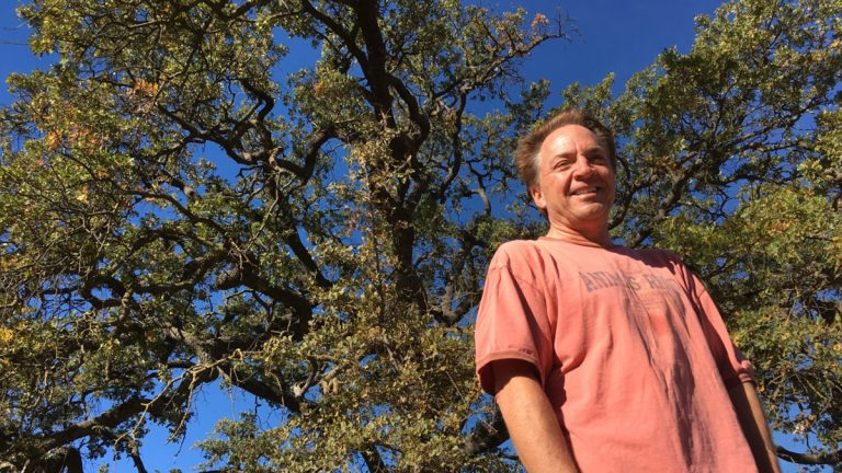 Vince Curtis stands in front of a mature valley oak. He hopes the ones he plants will someday grow this tall. (Sanden Totten/KPCC)