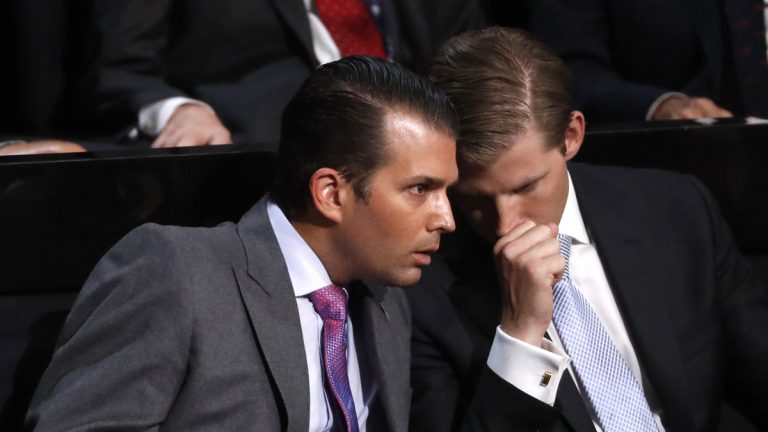 Donald Trump's sons Donald Jr. and Eric