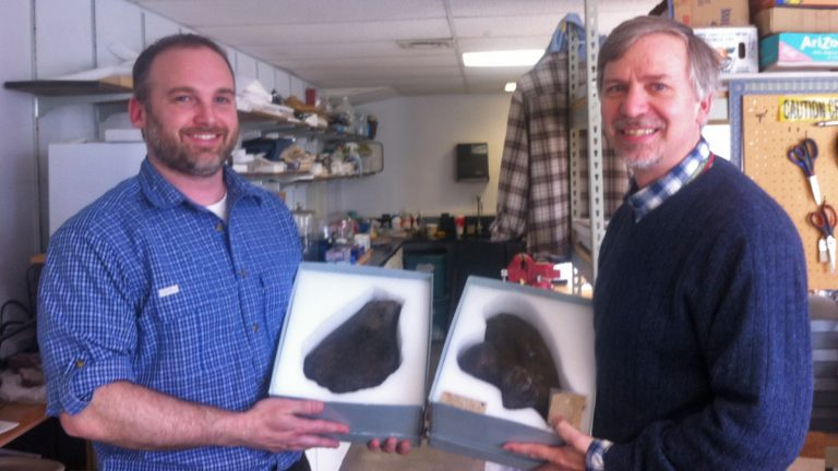 Jason Schein, assistant curator of natural history at New Jersey State Museum (left), and Ted Daeschler, curator of paleontology at the Academy of Natural Sciences of Drexel University, hold two matching pieces of turtle bone.  (Maiken Scott/WHYY)
