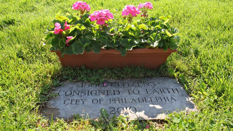 A single stone marks the grave of 1,500 Philadelphians whose cremated remains were never claimed from the Medical Examiners Office. (Emma Lee/WHYY)