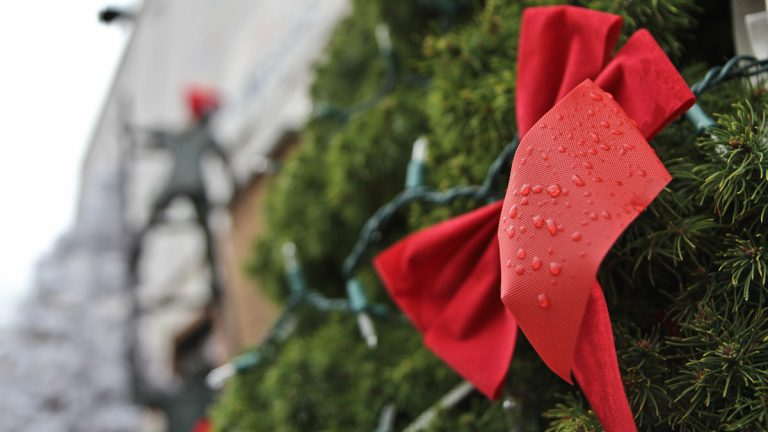 A Christmas bow, wet by rain (Kimberly Paynter/WHYY)