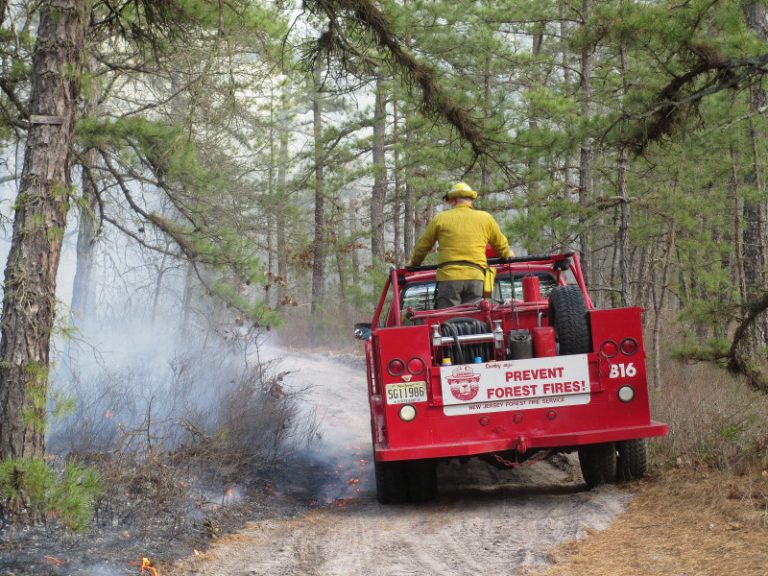 A controlled burn in Wharton State Forest, Burlington County on March 3, 2013. (Image: NJ Forest Fire Service, Section B10)