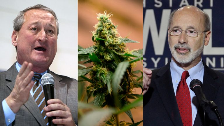 Democratic mayoral candidate Jim Kenney (left); a marijuana plant; and Pennsylvania Governor Tom Wolf (Photos by Stephanie Aaronson/The Next Mayor; Eduardo Verdugo/AP Photo; and Emma Lee/WHYY)