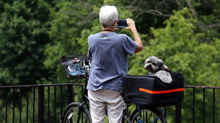 Elaine Burns, of Deer Lake, Pa., takes photos while biking with her dog J.J. Dog in  Ohiopyle State Park in Ohiopyle, Pa. (AP Photo/Gene J. Puskar)