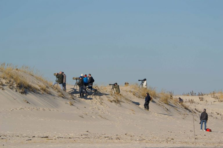 Photographers on a dune in Island Beach State Park  in late December. (Photo: Kevin Knutsen)