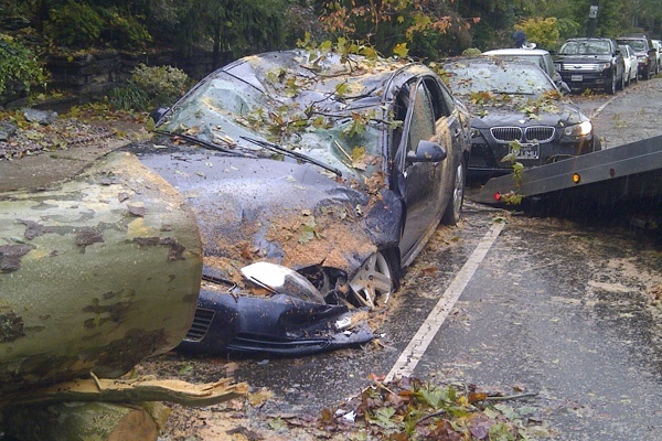 <p><p>15. A downed tree from Superstorm Sandy leaves this car in its wake on Midvale Avenue. (Brian Hickey/WHYY).</p></p>