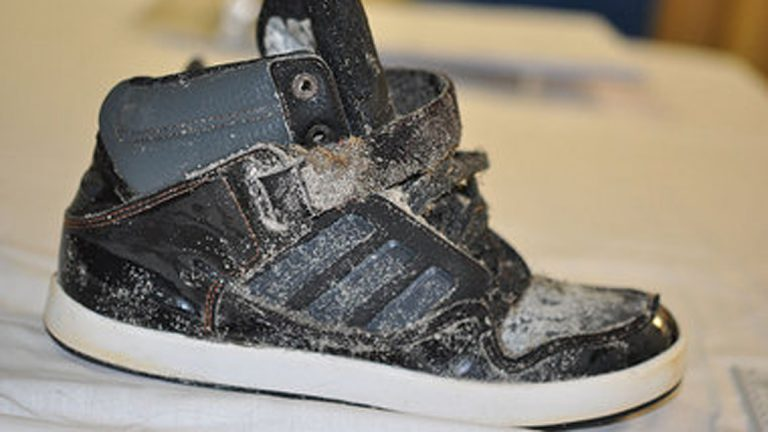 The Southern Regional Medical Examiner's Office determined that the remains are a right foot, inside a black Adidas high top sneaker, size 5 ½. (Photo courtesy of South Jersey Times)