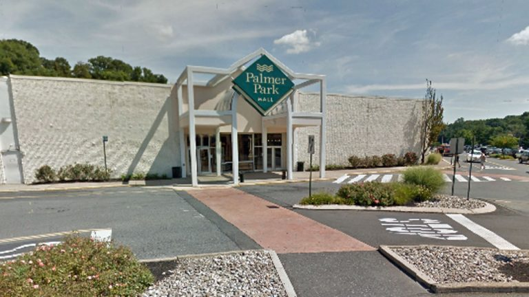 Roger Carney was outside the Palmer Park shopping mall in Pennsylvania when the accident occurred.(Image via Google Maps)