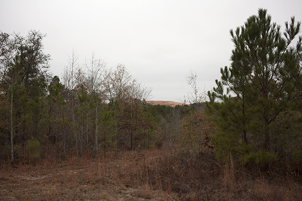 The landfill peaks through the trees by Ron Smith's house, several miles away