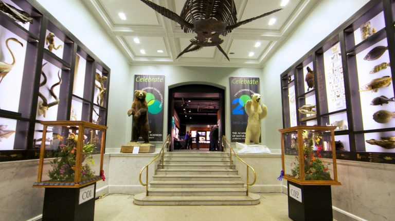 The Academy of Natural Sciences in Philadelphia is making statements on  climate change, water, evolution, and biodiversity and extinction as part of a new era of public engagement. (Nathaniel Hamilton for NewsWorks, file)