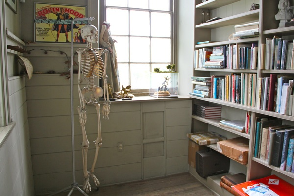 A human skeleton and a headless doll are part of the decor of the Wyeth library. (Emma Lee/for NewsWorks)