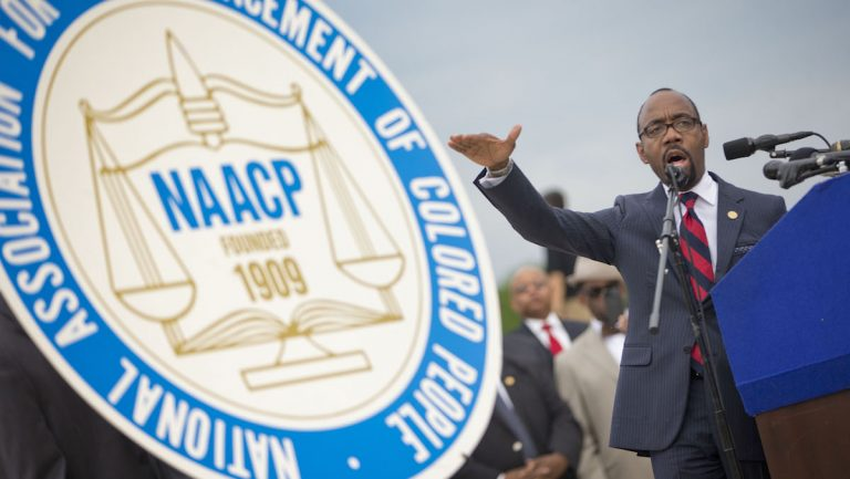 National Association for the Advancement of Color People (NAACP) President and CEO Cornell William Brooks speaks during a news conference announcing NAACP's Journey for Justice, Monday, June 15, 2015, at the Lincoln Memorial in Washington. (AP Photo/Pablo Martinez Monsivais)