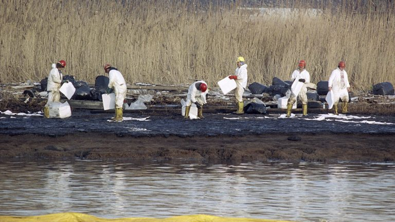 In January 1990, cleanup workers lay down absorbent sheets to soak up heating oil on bird sanctuary Pralls Island between Linden, New Jersey, and Staten Island, New York. Up to 567,000 gallons of oil leaked from an underwater Exxon pipeline into the Arthur Kill waterway. As New Jersey nears a settlement with Exxon over environmental damage at that site and others, critics argue the proposed $225 million pales in comparison with the $8.9 billion in damages the administration sought at trial last year. (AP file photo)
