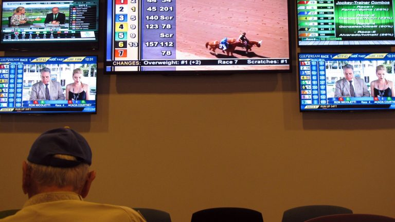 A bettor watches video screens at the Meadowlands Racetrack in East Rutherford