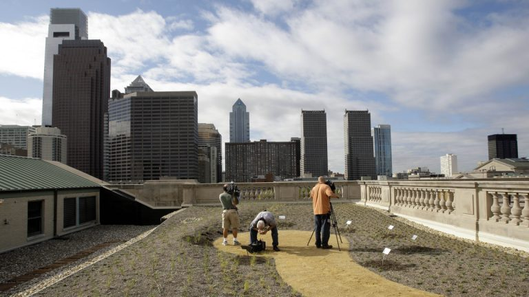 The first green roof on a building operated by the city of Philadelphia is planted prior to its September 2008 unveiling ceremony (Matt Rourke/AP Photo)