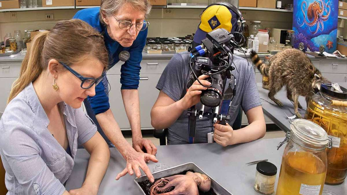 A behind the scenes shot of Emily Graslie working on her web series. (Courtesy of John Weinstein of The Field Museum)