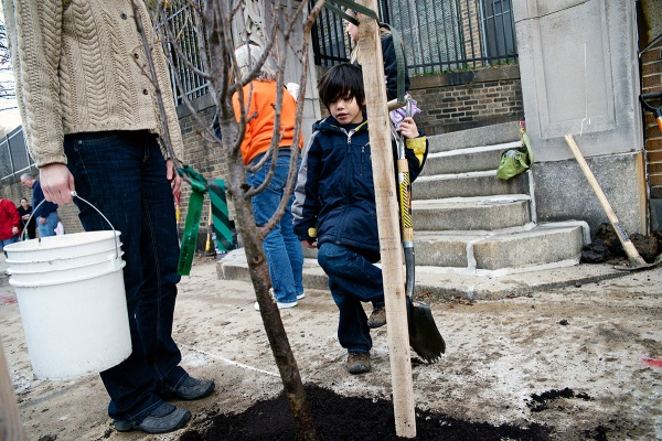 """<p><p>Jaden watches how the newly-planted tree is """"drinking the water,"""" as he describes it. (Bas Slabbers/for NewsWorks)</p></p>"""