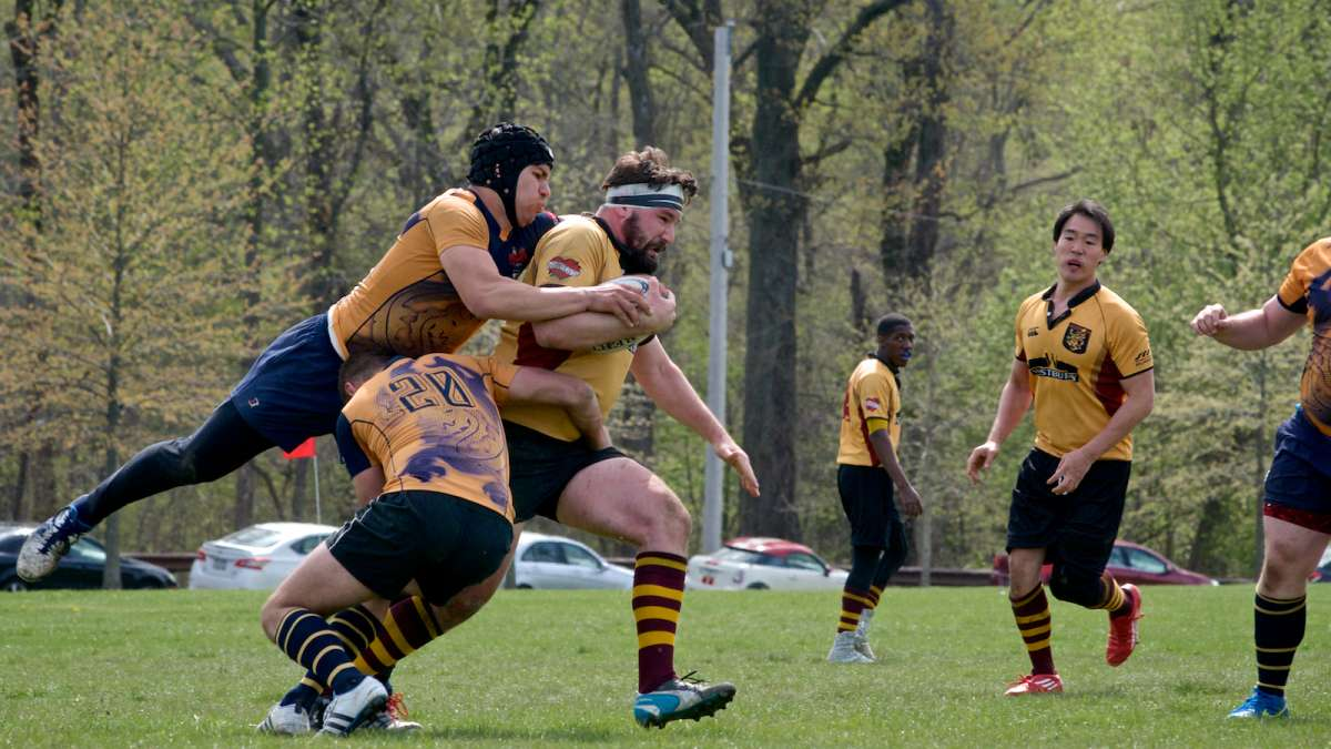 HOST gay rugby Search