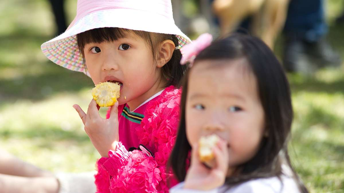 Ruochen Lu and Vivian Wu are among a group picnicking under the sakura trees during the annual Cherry Blossom Festival in Fairmount Park on Sunday.