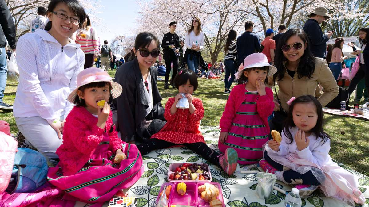 Ruoxi Lu, Kathy Yu, Ruochen Lu and Vivian Wu are among a group picnicking under the sakura trees during the annual Cherry Blossom Festival in Fairmount Park on Sunday.