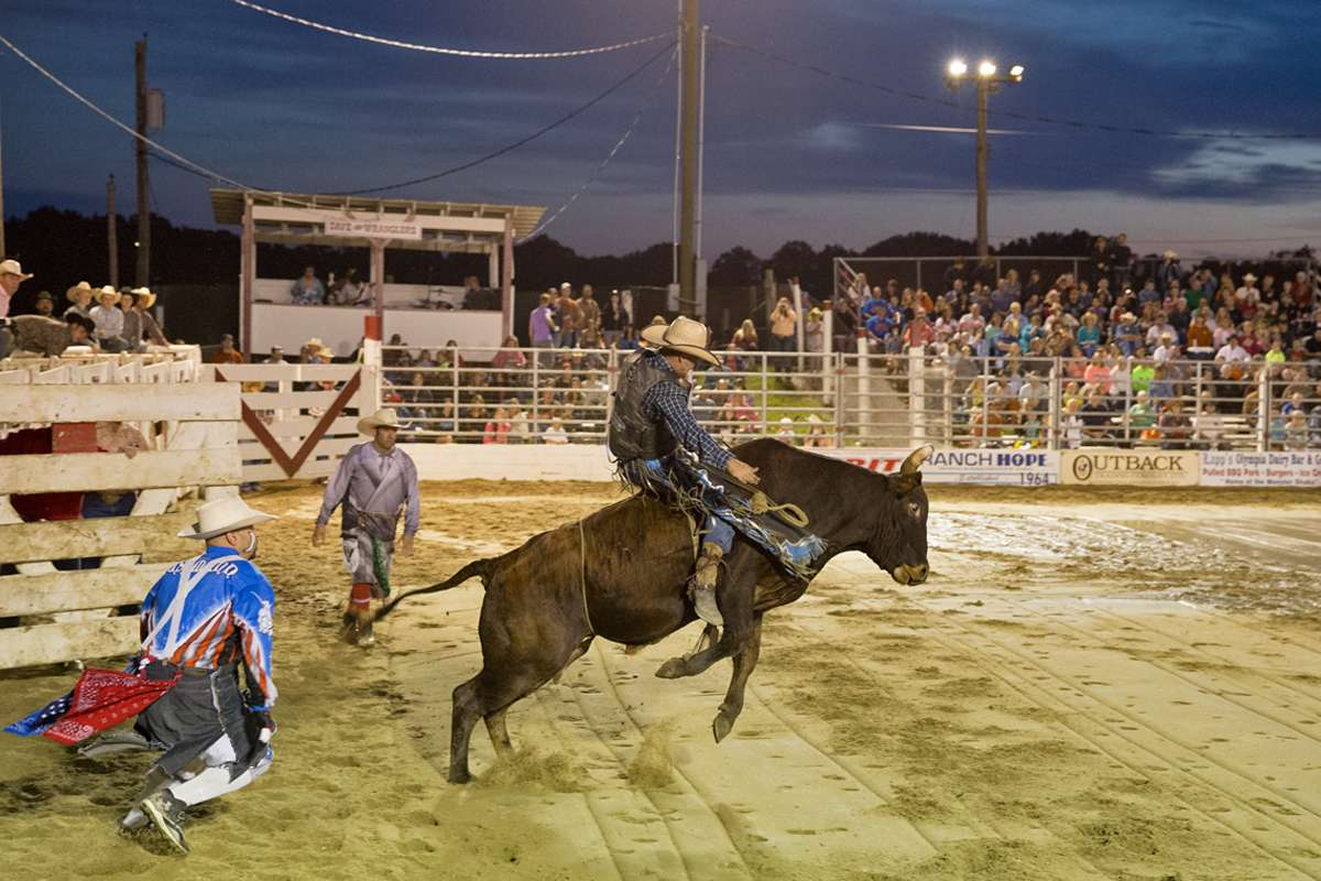 A bull has about six moves and the challenge to riding is reacting to the succession of moves said veteran rider Troy Alexander. (Lindsay Lazarski/WHYY)
