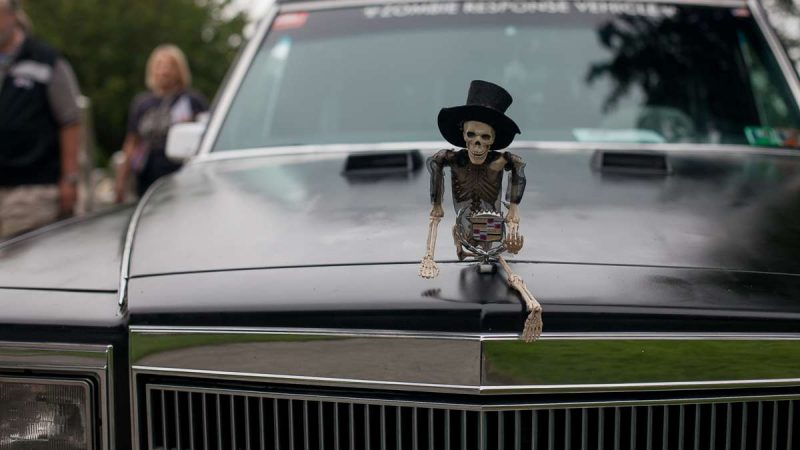 A skeleton embellishes the hood ornament of a Cadillac hearse at the ninth annual Hearse and Professional Vehicle Show at Laurel Hill Cemetery. (Brad Larrison for NewsWorks)