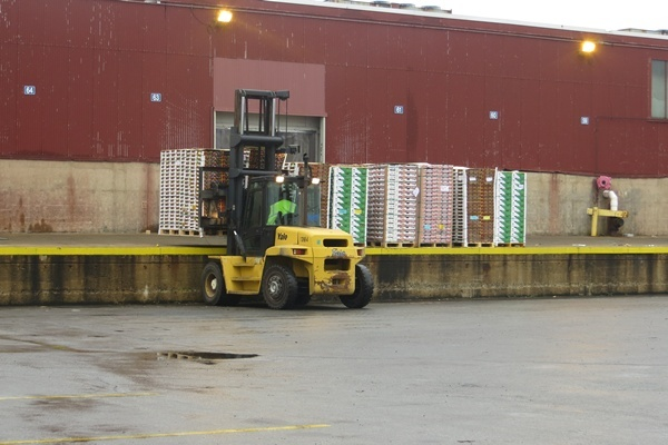 <p><p>Chile exports table grapes, blueberries, cherries, peaches, nectarines, apricots and plums to the U.S. via the Port of Wilmington (Shirley Min/WHYY)</p></p>