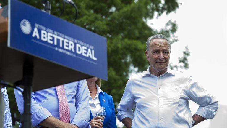 Senate Minority Leader Chuck Schumer of New York, joins fellow congressional Democrats as they unveil their new agenda, Monday, July 24, 2017, in a park in Berryville, Virginia. (AP Photo/Cliff Owen)