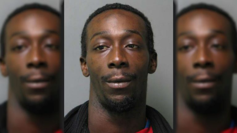 27-year-old Denzel Brown faces animal cruelty charges after police say he stabbed two pit bulls to death following an argument with his girlfriend. (Delaware State Police photo)
