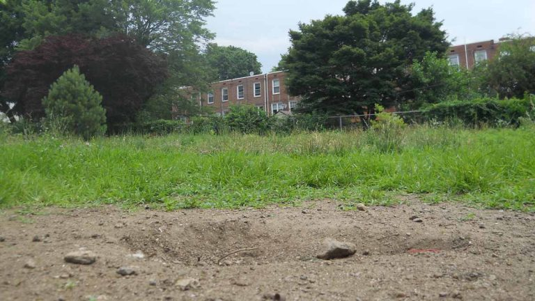This lot on Mitchell Street in Roxborough has been vacant for nearly 30 years. (Kayla Cook and Sean Smith of Philadelphia Neighborhoods/for NewsWorks)