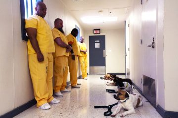 Darren Hardison and Duchess, Scott Ryan and Roe, Richard King and Juno, and Duncan Davis and Cinnamon at the Camden County Correctional Facility. (Kimberly Paynter/WHYY)