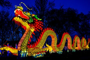 The Philadelphia Chinese Lantern Festival returns to Franklin Square Park offering visitors another opportunity to walk among the larger than life illuminated displays created in Zigong in Sichuan Province, China, the capital of Chinese lantern-making for thousands of years. Photo by Jeff Fusco.