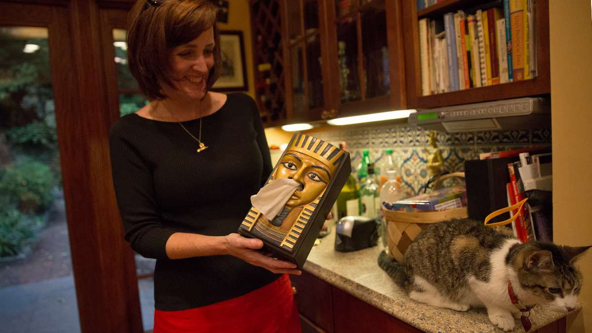 From King Tut tissue boxes to tchotchkes, the Wegners have amassed their collection from their travels to Egypt, antique stores, gifts, and Ebay.  (Lindsay Lazarski/WHYY)