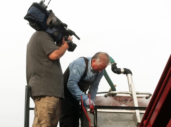 <p>First photographer Paul Parmelee shooting video of Tim Johnson sorting berries.</p>