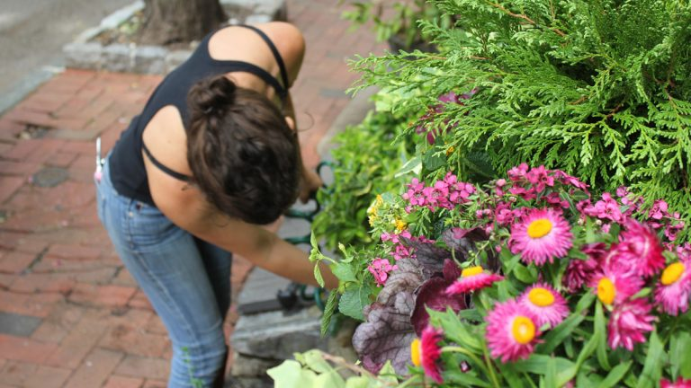 Elizabeth Jacoby quit her day job to turn her gardening skills into a business. (Emma Jacobs/WHYY)