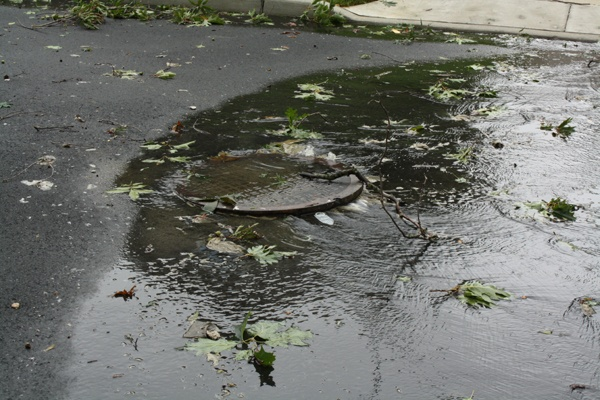 A sewer cover in Haddon Township New Jersey being pushed up by flood waters following Hurricane Irene.