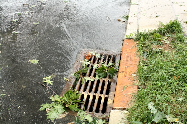 A storm drain in Haddon Township New Jersey is working overtime following Hurricane Irene.
